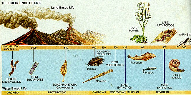 Precambrian life mystery was revealed
